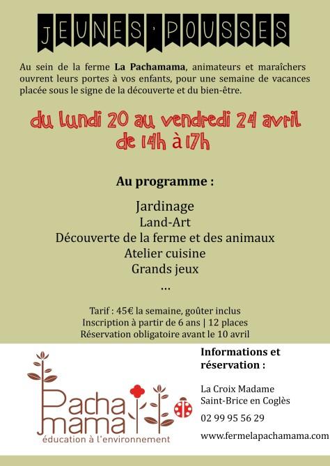 Flyer Jeunes Pousses 2015